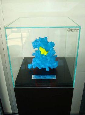Ausstellungsstücke in 3D